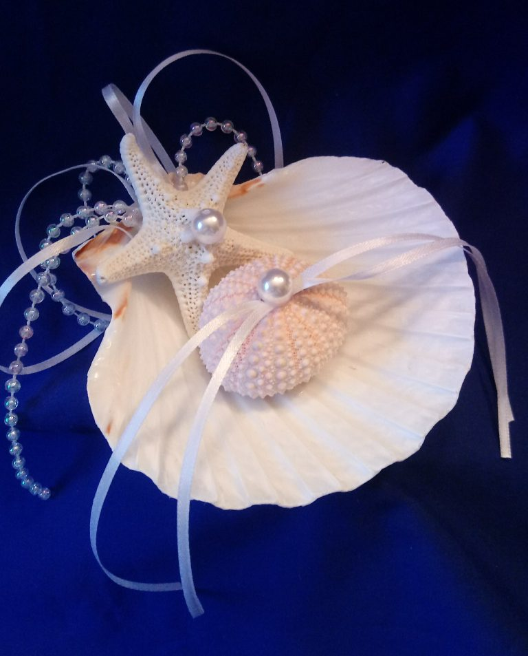 Scallop Shell Ring Bearer with Ribbons
