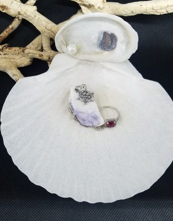 Scallop Ring or Jewelry Dish
